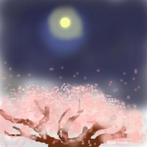 Kisaragisakurarobin_2