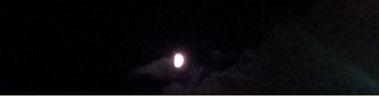 20120825_tanabata