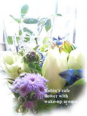 Wakeflower